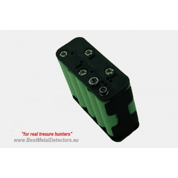 Battery Holder Golden Mask with rechargeable batteries